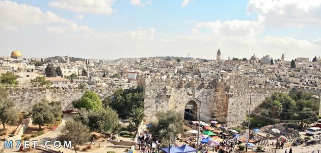 أكبر مدن في فلسطين