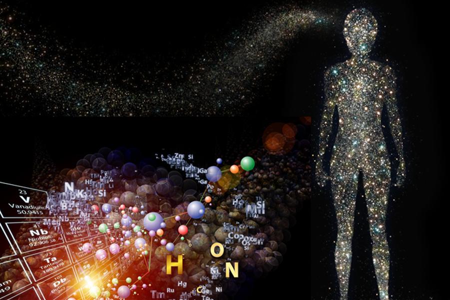 العناصر في جسم الإنسان