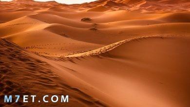 Photo of أين تقع صحراء لوط واهم المعلومات عنها
