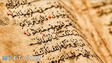 Photo of أهمية الثقافة الإسلامية | 5 خصائص للثقافة الإسلامية