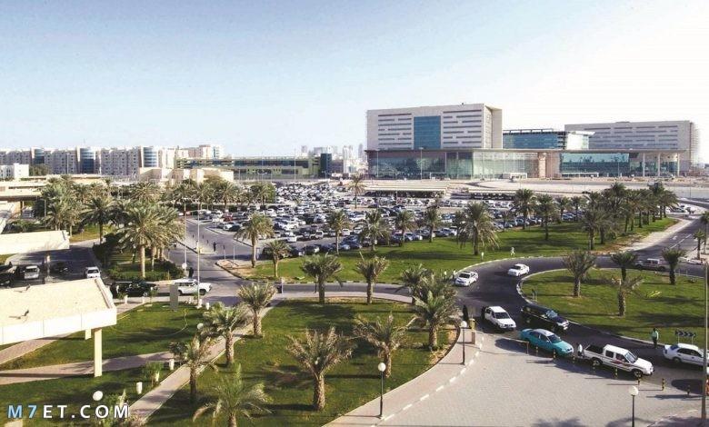 مدينة الريان في قطر