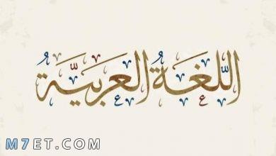 Photo of من هو اول من تكلم العربية