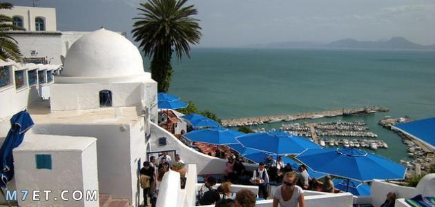 بماذا تتميز تونس