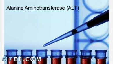 Photo of معلومات تفصيلية عن تحليل alt