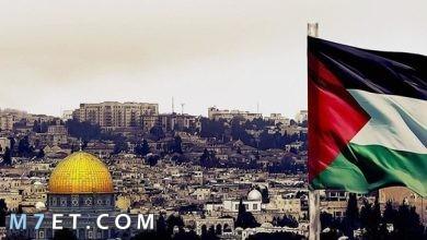 Photo of كم تبلغ مساحة فلسطين وتاريخها العريق