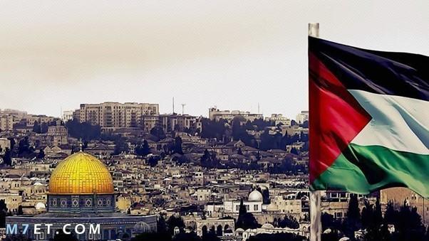 كم تبلغ مساحة فلسطين