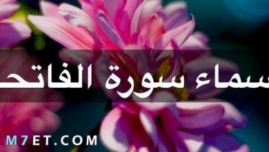Photo of اسماء سورة الفاتحة بالتفصيل