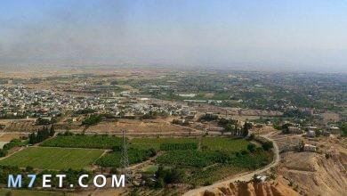 Photo of أهم المعلومات حول مدينة اريحا الفلسطينة والسورية