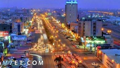 Photo of معلومات عن مدينة الأحساء السعودية من حيث المساحة و المناخ