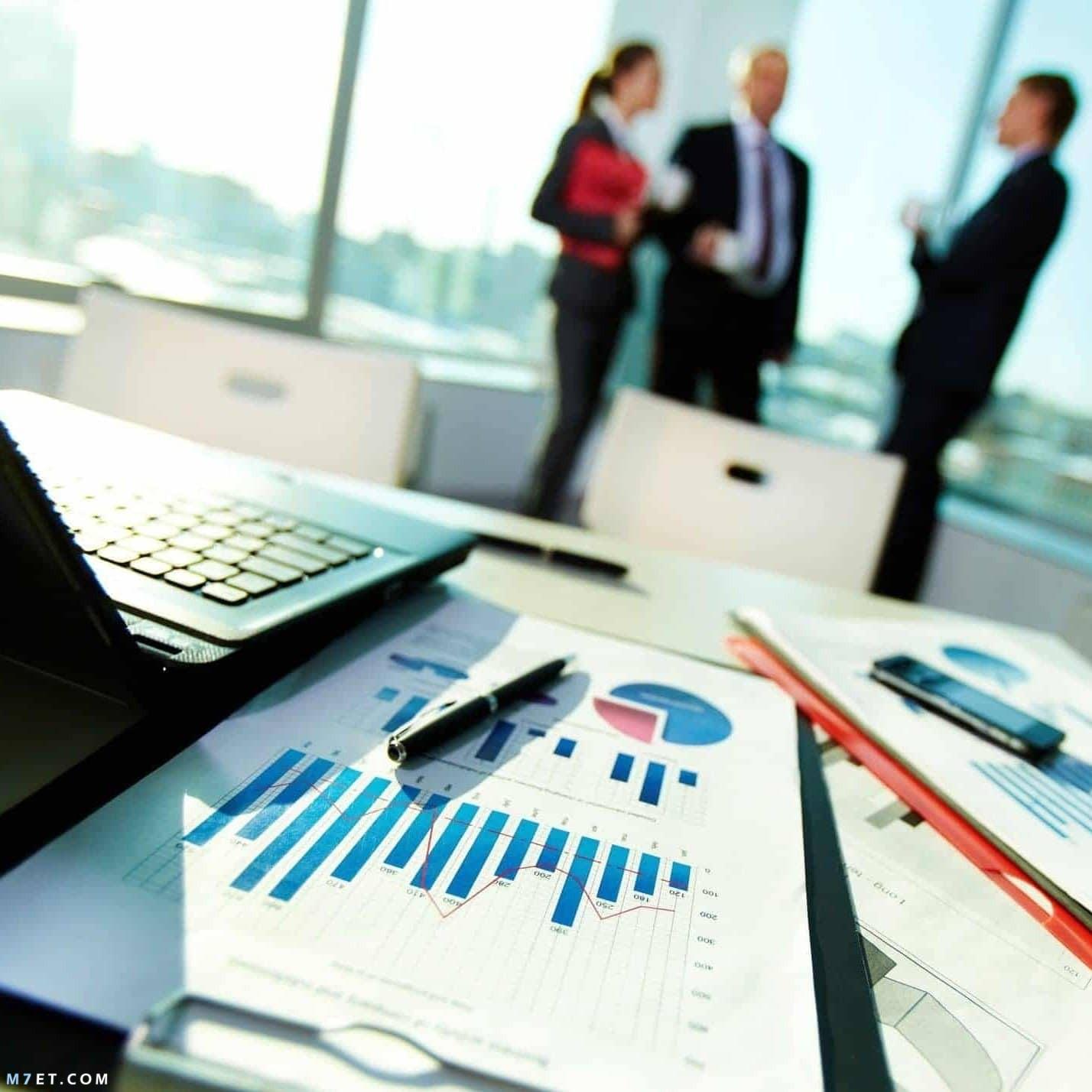 مجالات إدارة الأعمال