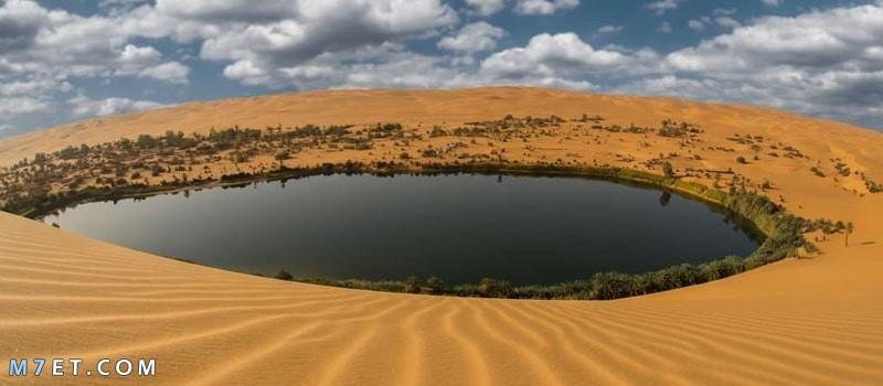 خصائص الوسط الطبيعي في الجزائر