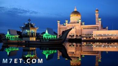 Photo of ما هو اجمل مسجد في العالم