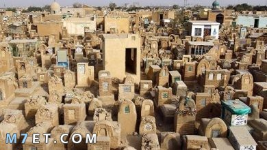 Photo of اكبر مقبرة في العالم وتاريخها العريق