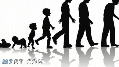 Photo of خصائص النمو في مرحلة المراهقة