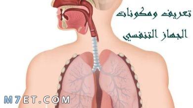 Photo of تعريف ومكونات الجهاز التنفسي