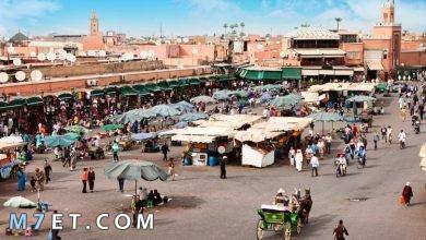 Photo of أين تذهب في مراكش واهم المعالم السياحة بها