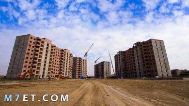 Photo of أهم المعلومات حول مدينة اليمامة