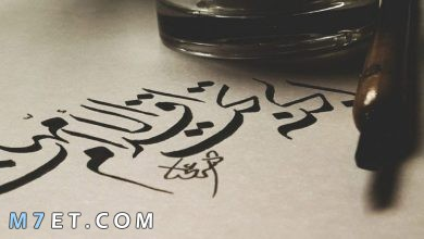 Photo of الجنة تحت أقدام الأمهات في القرآن الكريم