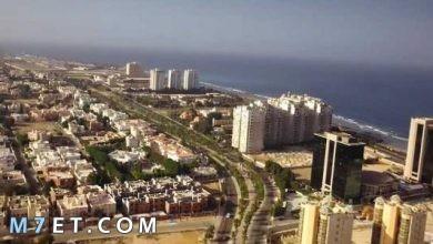 Photo of الملامح العامة لدول شبه جزيرة العرب